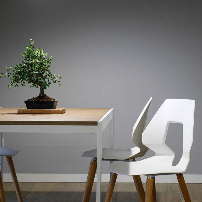 Dual Design Yadira Torres Diseño de Interiores